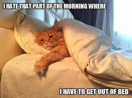 Exactly Look like me On Every Monday Morning   Wat about You Guys ...